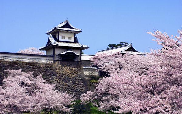 Chateau Kanazawa Japon