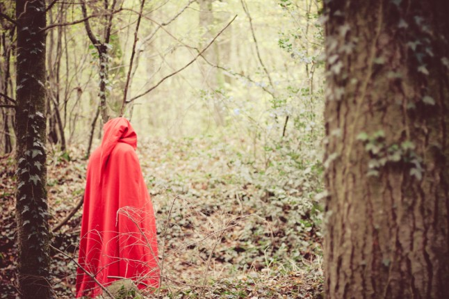 mariage médiéval forêt