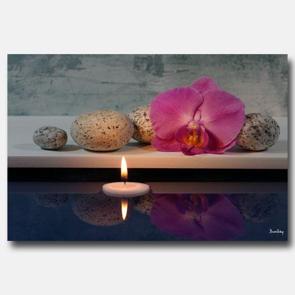 Orchidee-rose-Zen