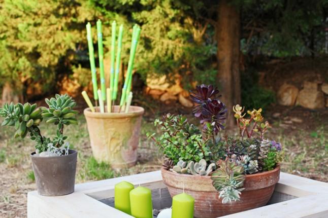 déco fleurs et plantes