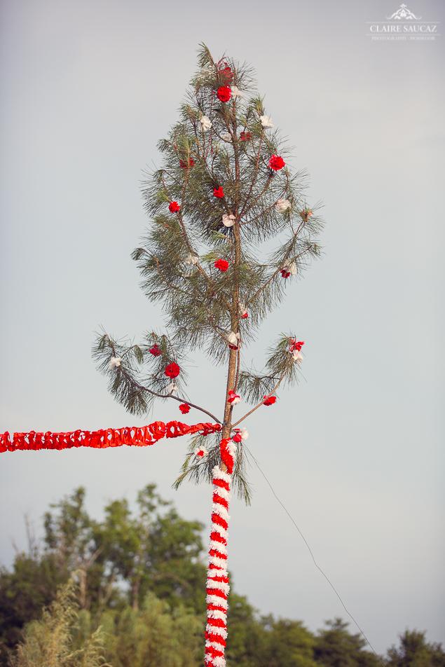 arbre mariés blanc et rouge mariage landais