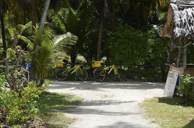 vélos tourisme voyage de noce Seychelles