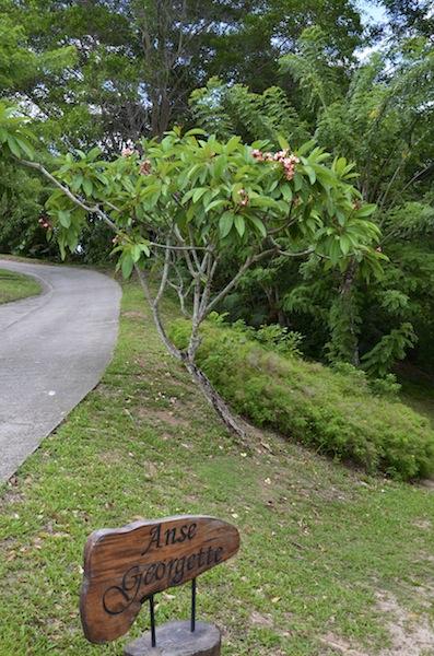 Route des Seychelles voyage de noce