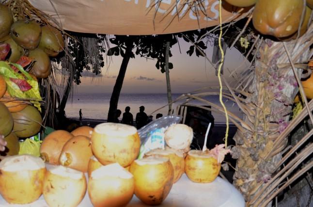 Noix de coco fraîches Seychelles voyage de noce