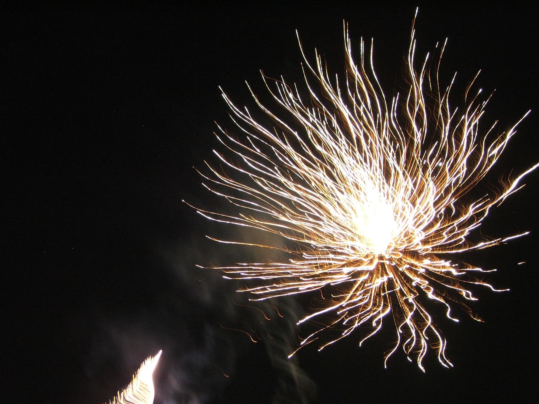 Les animations de notre mariage tout en douceur : le feu d'artifice