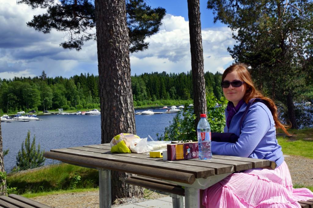 pique nique en Norvège