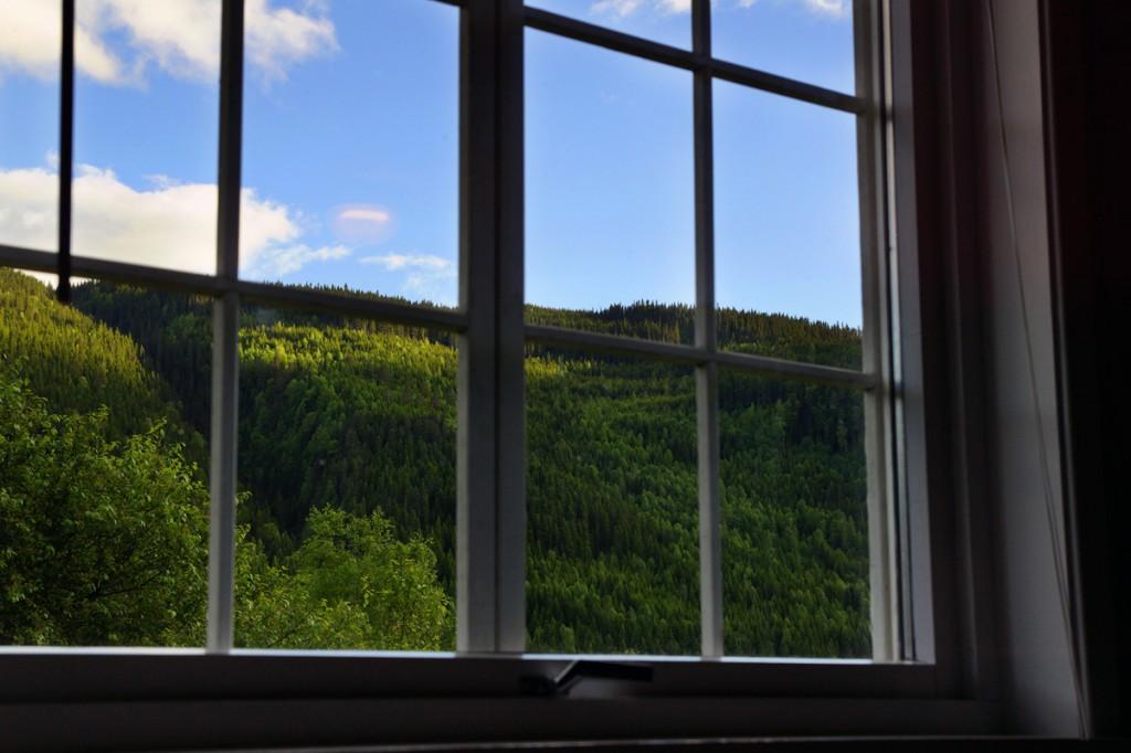 vue depuis la chambre Skarsmoen Gard