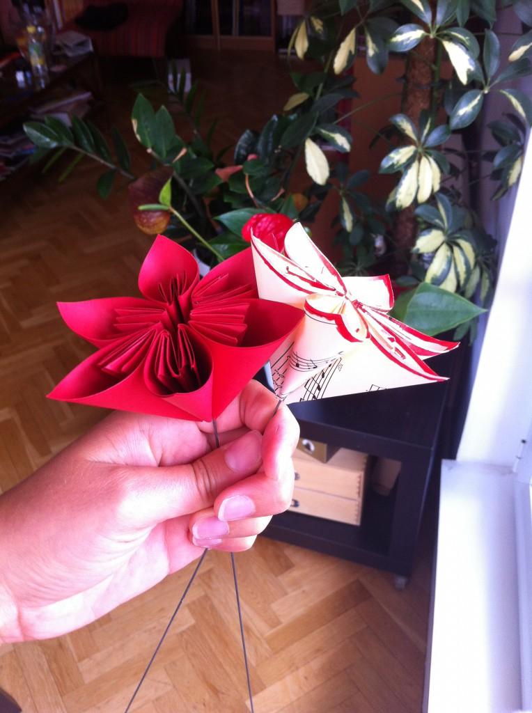 fleurs rouge et crème