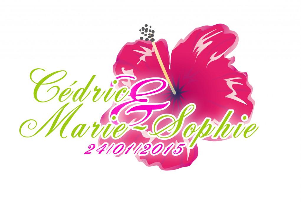 Le logo de notre mariage au thème de l'Ile de La Réunion