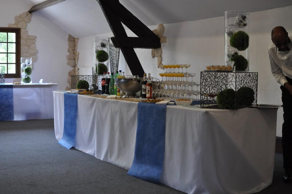 Le mariage de princesse en bleu de Madame D - cérémonie et vin d'honneur (22)