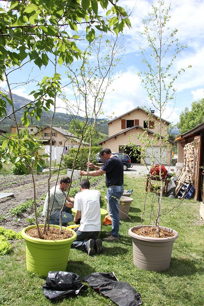 Mon garden wedding à la montagne : la semaine de préparatifs, entre joies et coups durs