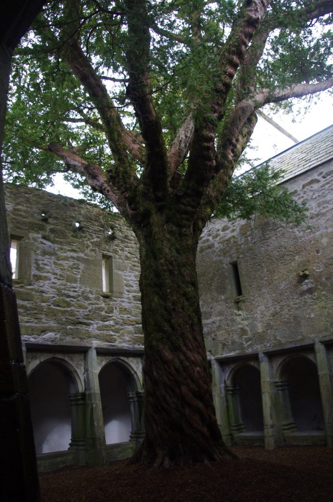 Un château médiéval pour mon mariage !