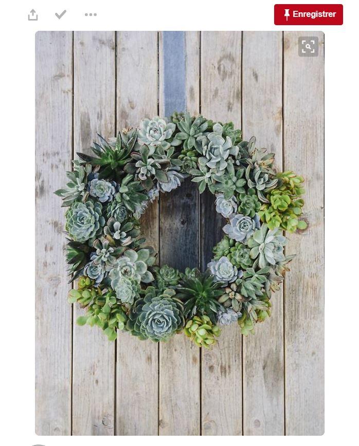Déco de mariage : succulentes