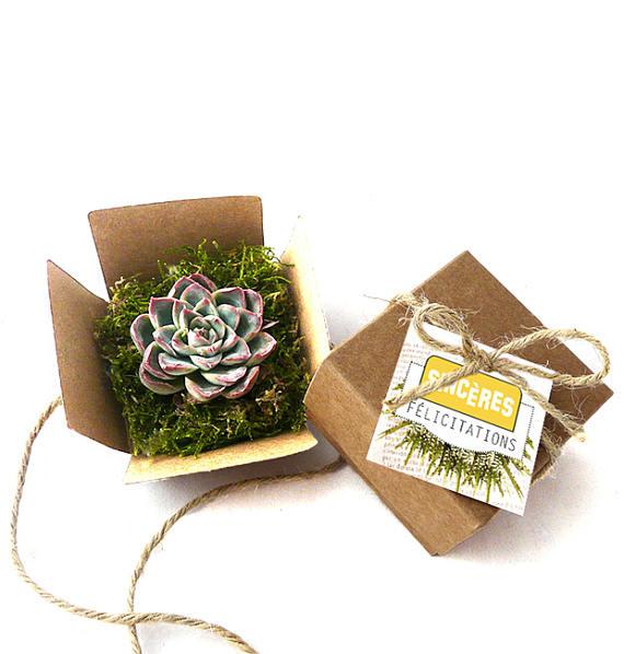 Ma wishlist Etsy : du bleu et du made in France - Cadeau Invités Succulente