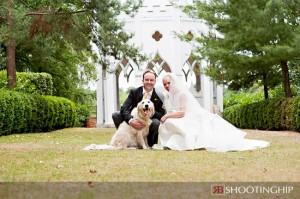 chien mariage mariés