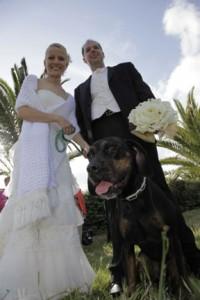 séance photo couple contre plongée chien