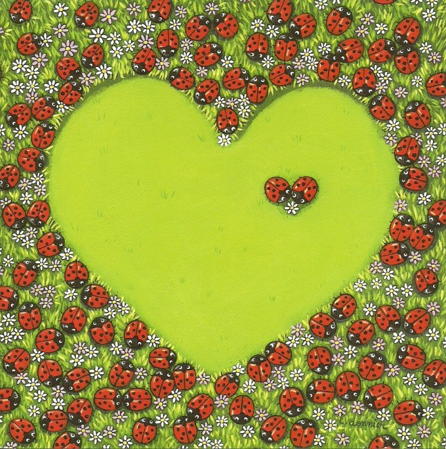 carte coeur coccinelles