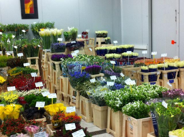 étalages de fleurs