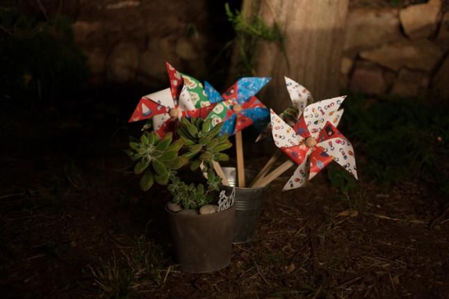 plantes et pinwheel