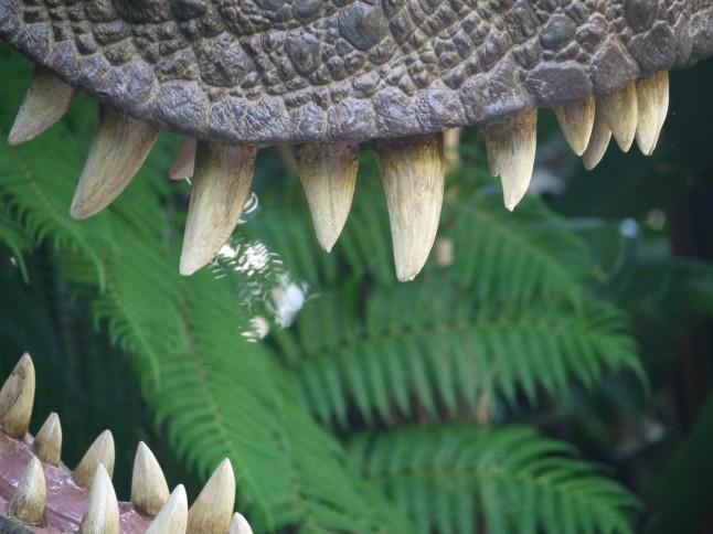 Voyage de noce thème cinéma Jurassic Park