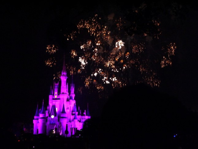 Voyage de noce à Disneyworld