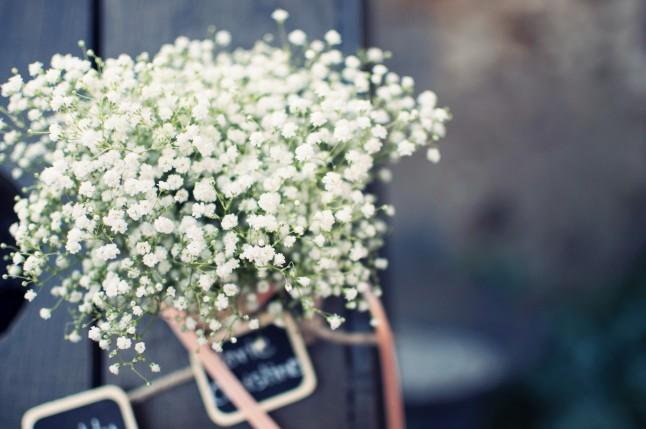 Déco florale mariage gypsophile