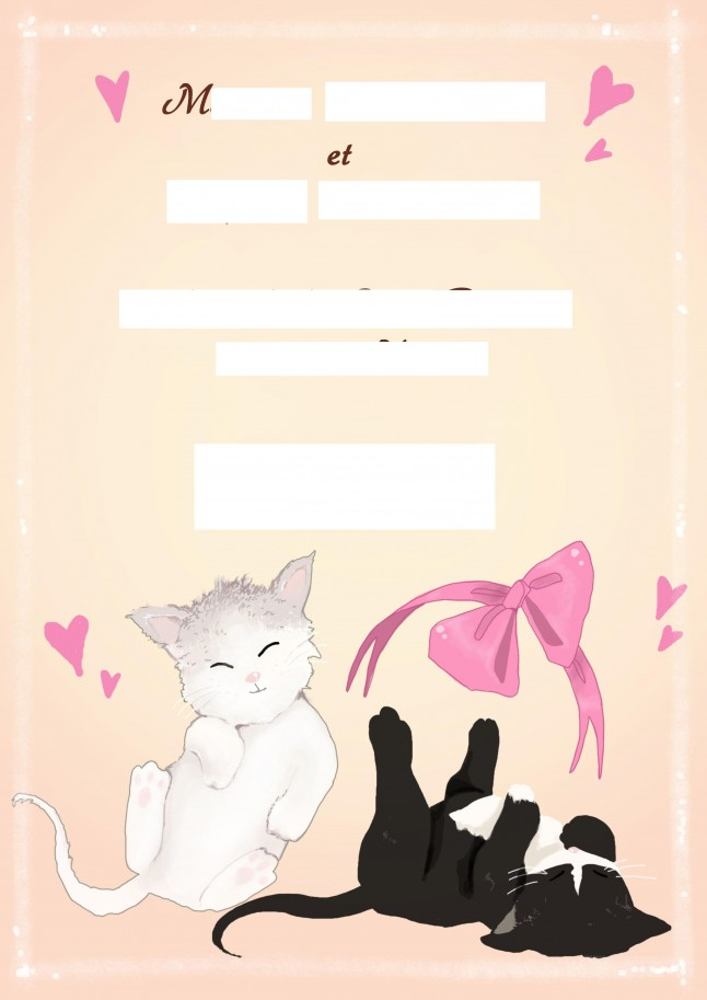 Faire-part personnalisé chats