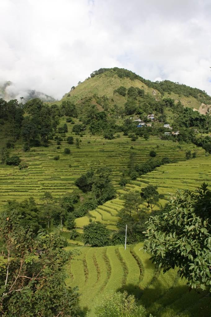 voyage de noce au Népal paysage