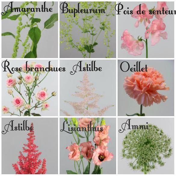 fleurs champêtres blush, corail, menthe et blanc