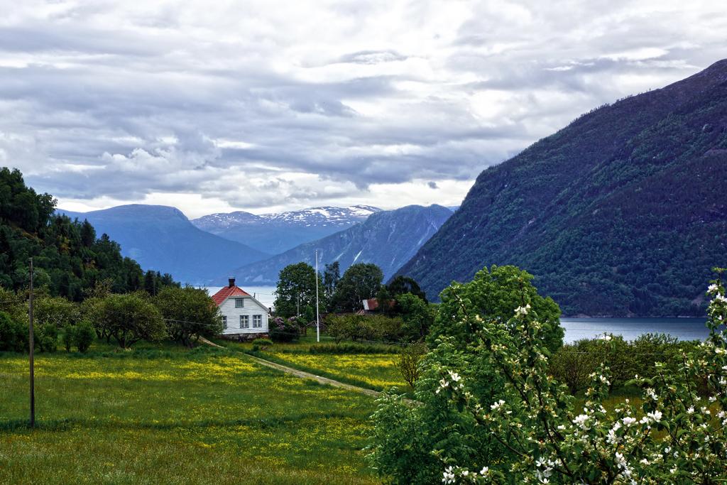 Lustrafjord - vue depuis l'église d'Urnes