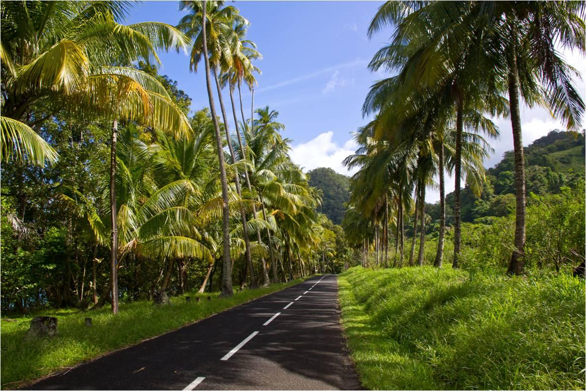 Mon mariage enneigé : notre voyage de noces aux Antilles – Partie 2