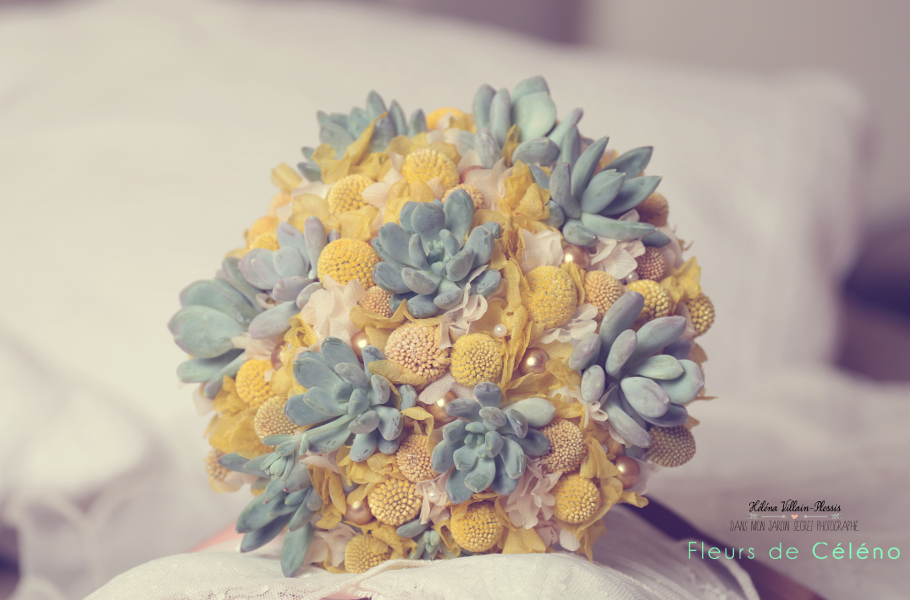 Fleurs de Celeno