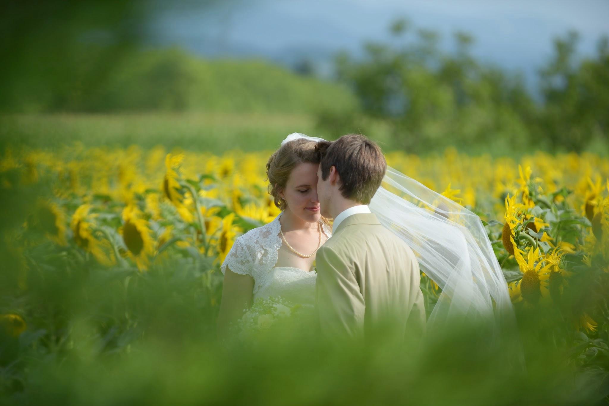 Le mariage franco-américain et romantique de Sarah dans les champs de tournesols