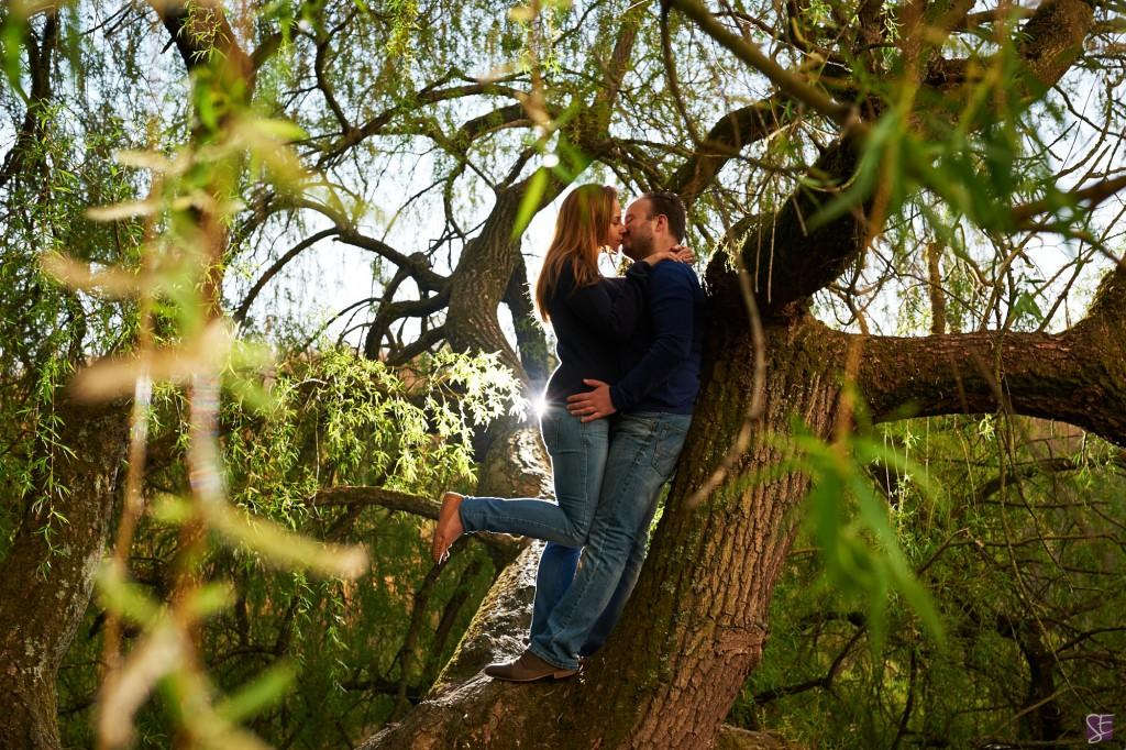 Photo de couple, sur un arbre, pour une séance d'engagement / Photo : Stéphane Evras