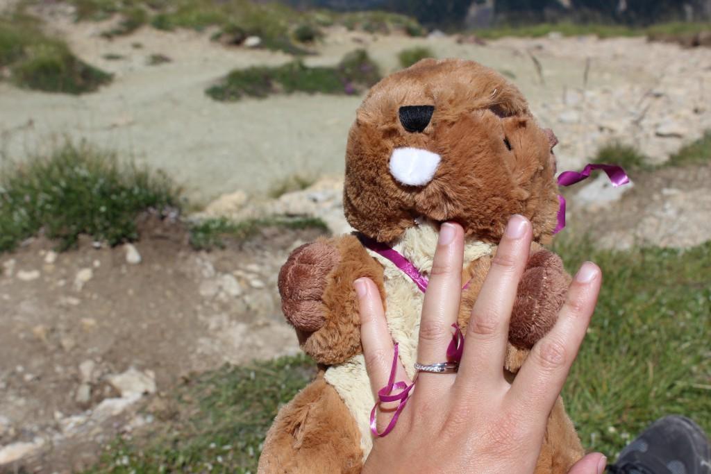 Une demande en mariage drôle et romantique lors d'une randonnée dans les Alpes