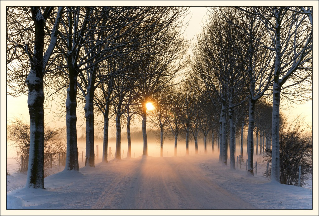 Un mariage à Noël avec une ambiance hivernale