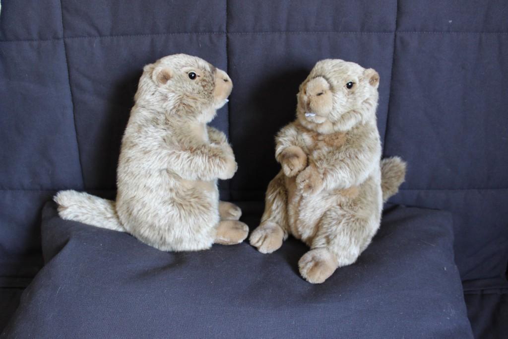 Nos marmottes personnalisées pour le photobooth