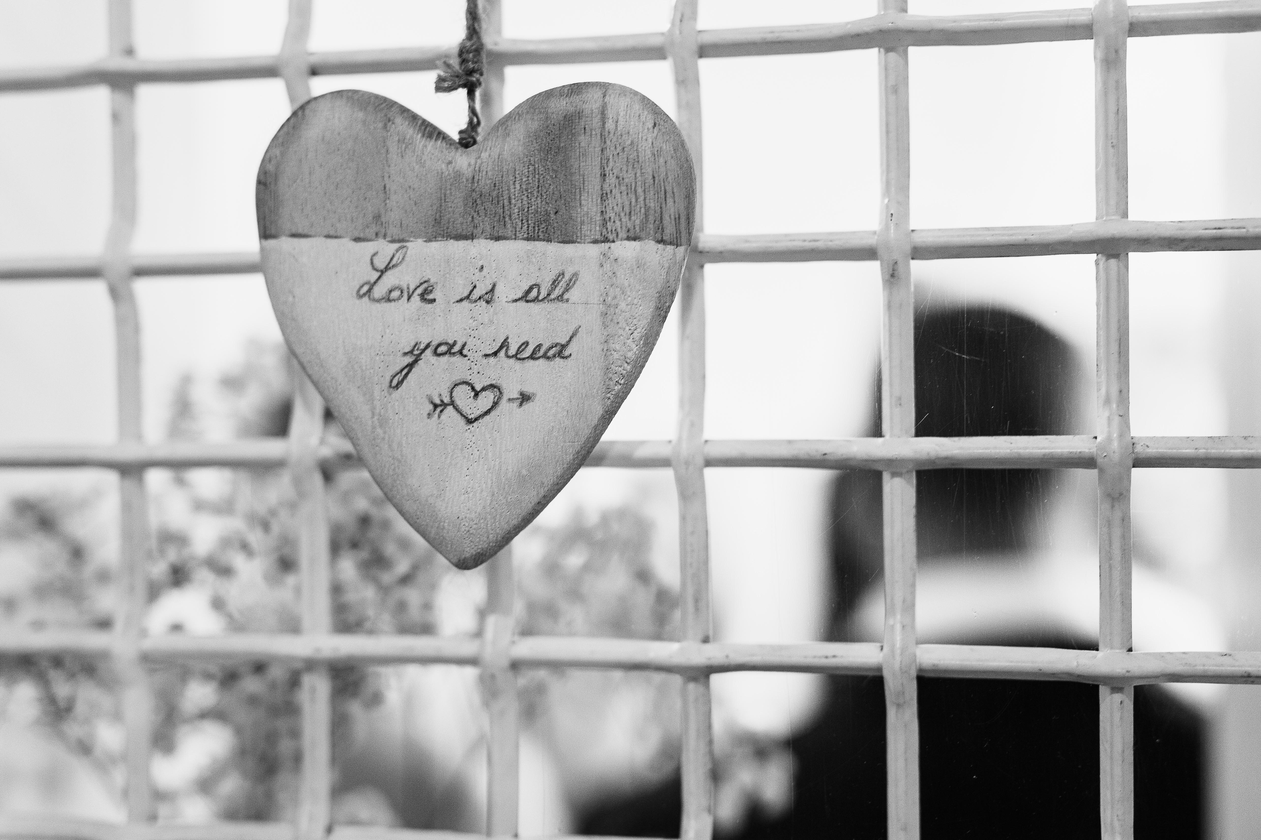 Mon mariage plein d'humour et de tendresse : notre découverte en toute intimité