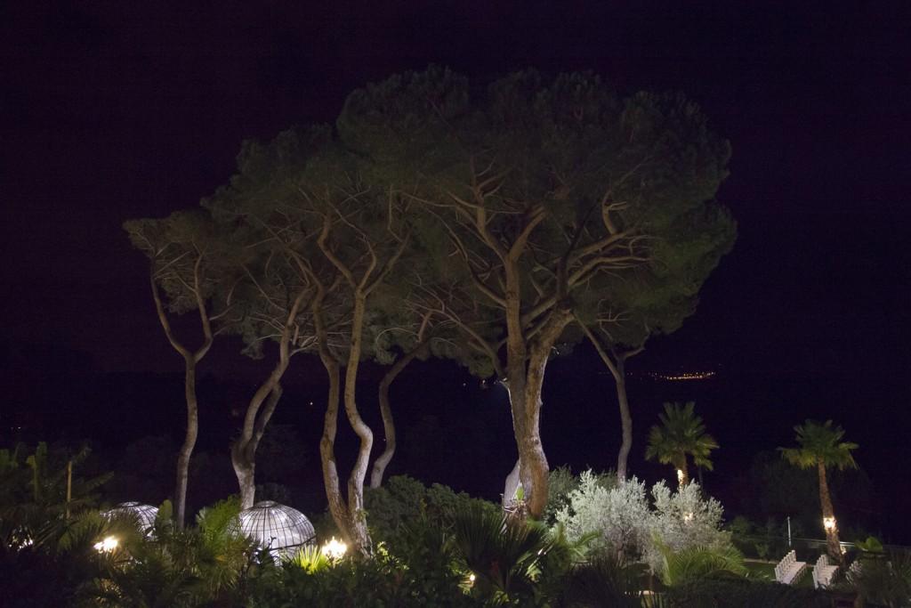 Le mariage romantique de Julie en Provence - Photo Peggy Herbeau 2 (22)
