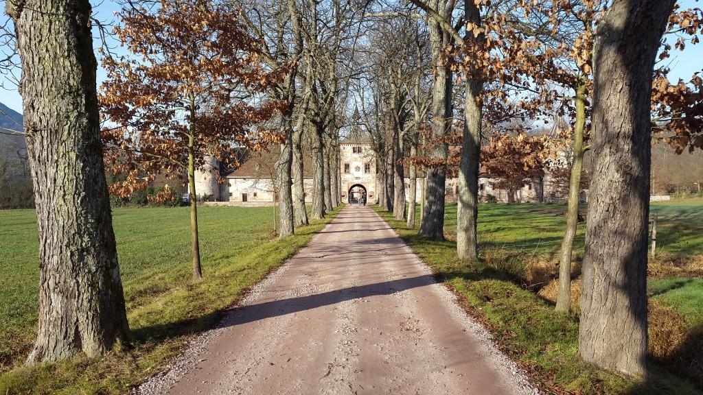 Un lieu pour notre mariage : le château de Thanvillé