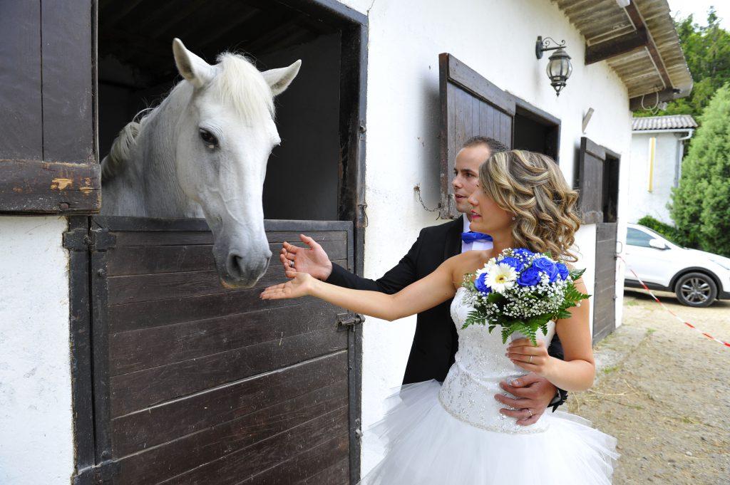 Le mariage surprise d'Alison organisé de A à Z par son fiancé (14)