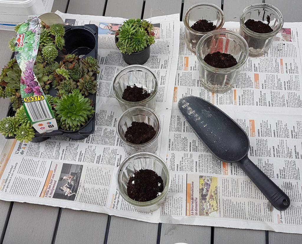 Décoration de mariage : bocaux de succulentes
