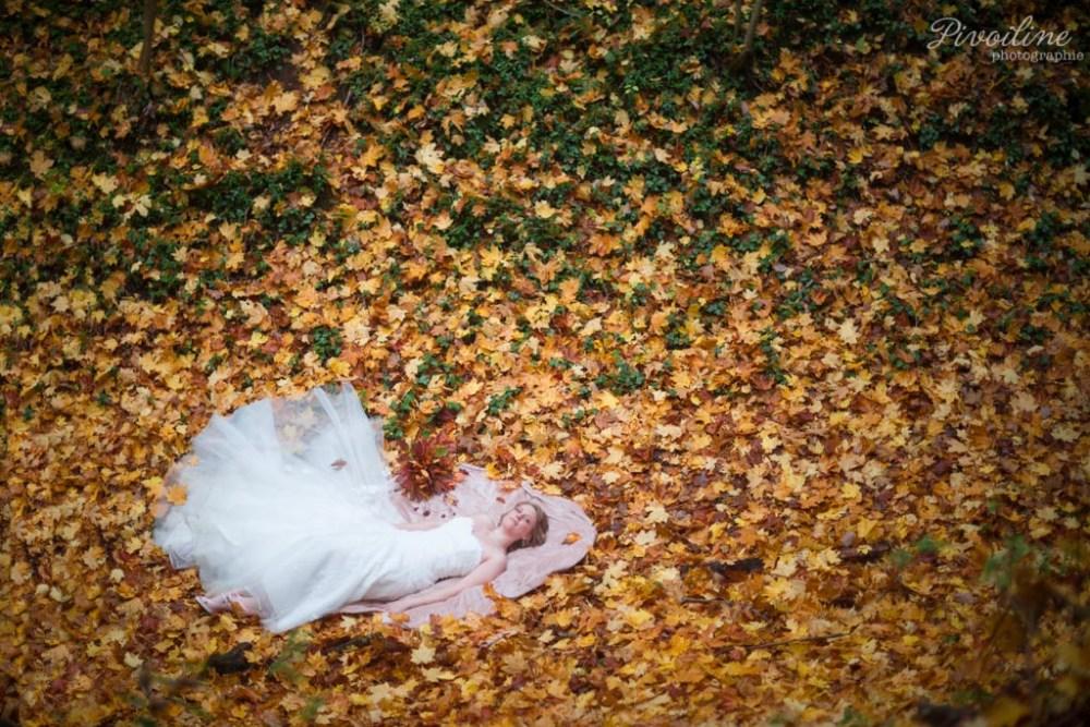 Mon day after d'automne dans la campagne picarde