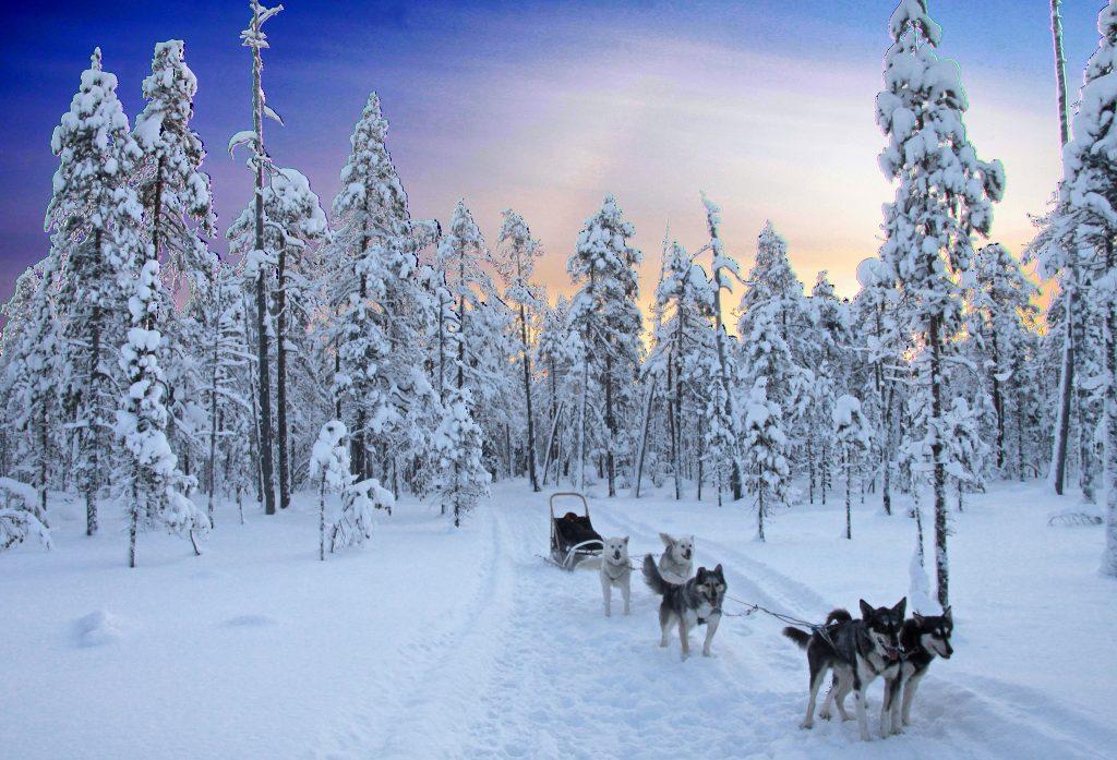 Préparer son voyage de noces/road trip en Laponie, mode d'emploi