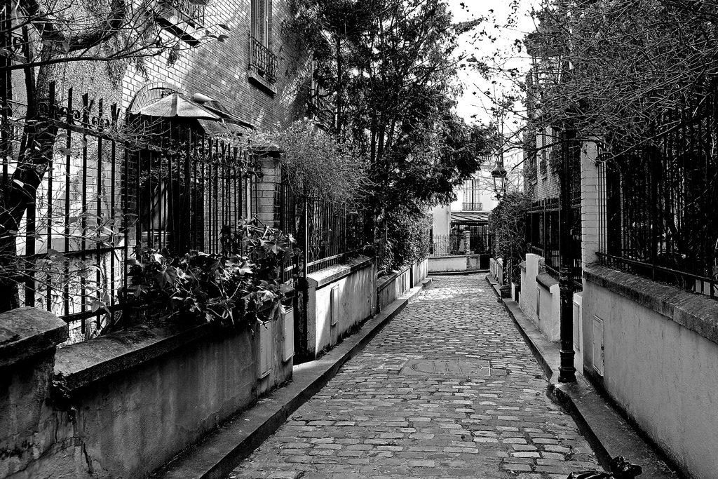 Ma demande en mariage à Paris