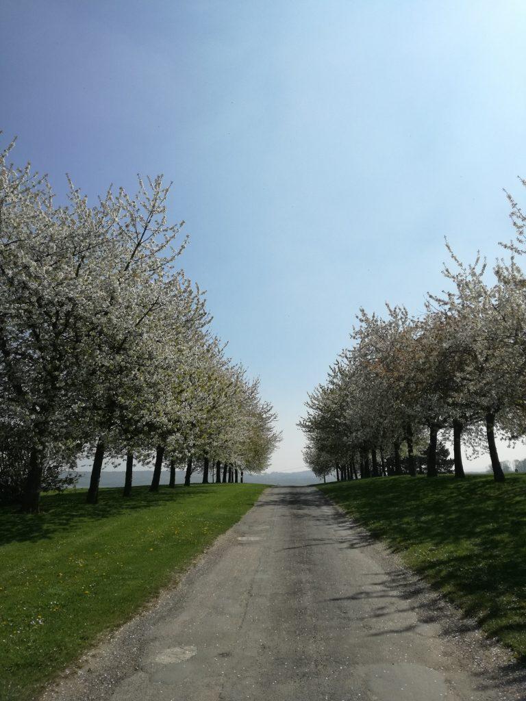 Chercher un domaine en région parisienne
