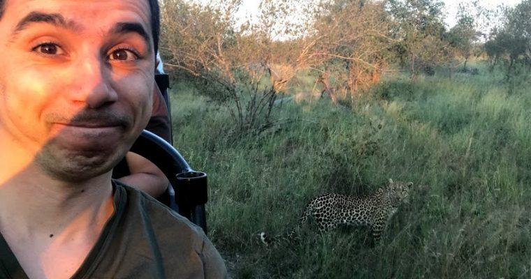 Voyage de noces – Partie 2: un safari!!