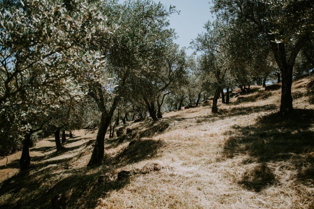 Préparatifs de mon mariage en Andalousie