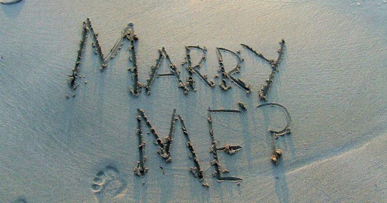 Un triton, une sirène, un poisson : la demande en mariage
