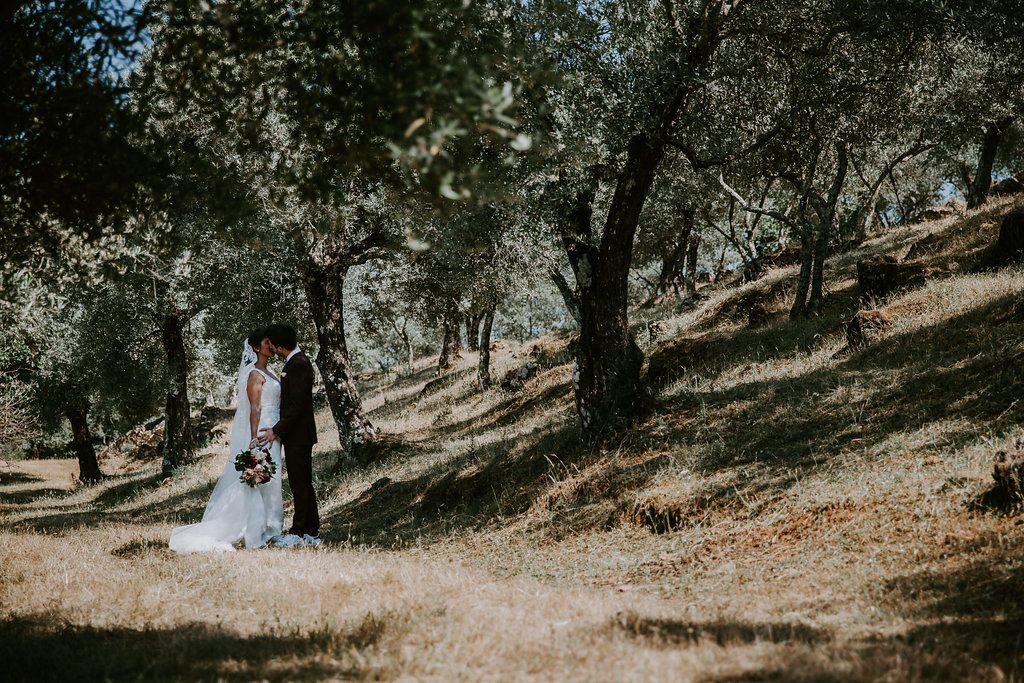 Notre first look au milieu des oliviers // Photo : Les Récits de Becca